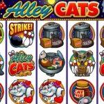 Игровой автомат Alley Cats. Обзор и отзывы